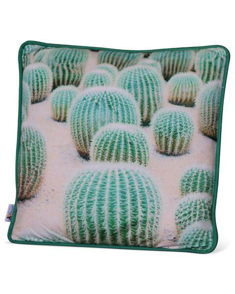 Sierkussen Cactussen